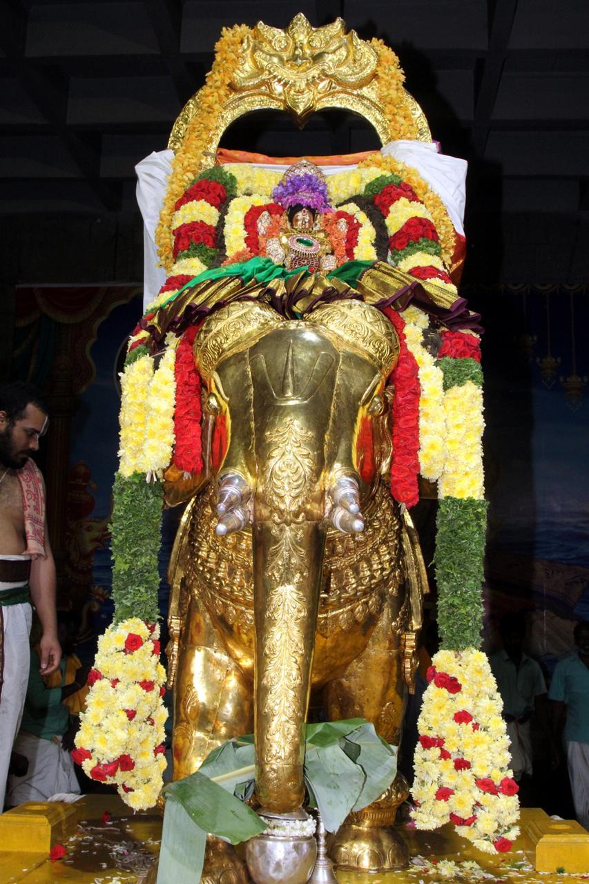 Ratha sapthami